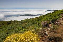 Plateau Paul da Serra nell'isola del Madera Fotografie Stock Libere da Diritti