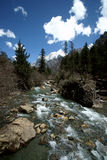 Plateau river with blue sky in sichuan of china Royalty Free Stock Image