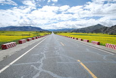 Plateau on the road. This is a section of the highway is located on the Qinghai Tibet Plateau Royalty Free Stock Image