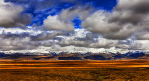 Plateau of the sky grassland Stock Images