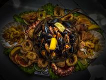 Plateau with squid, octopus, mussels and shrimps Stock Images