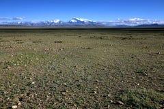 Plateau tibetano Fotografia Stock Libera da Diritti