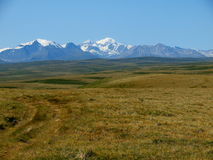 Plateau Ukok, mountain Altai Stock Image