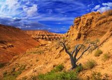 Plateau Ustyurt del canyon in Kazakhstan Immagini Stock Libere da Diritti