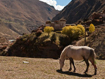 Plateau valley. The village scene in the valley at eastern Tibetan plateau Royalty Free Stock Photos