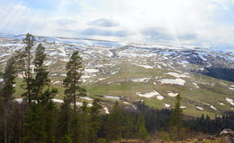Plateau on the western Caucasus Lago-Naki. Beautiful Plateau on the western Caucasus Lago-Naki Stock Photos