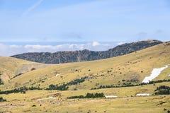 Plateau widok od Witse-Oreum w Yeongsil Obraz Royalty Free