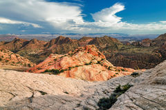 Plateau Yant plat - falaises de sucrerie, Utah Photos stock