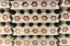 Plateaux avec des oeufs Texture, fond photographie stock libre de droits