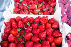 Plateaux colorés de fraises dans l'épicerie de santé Photos libres de droits