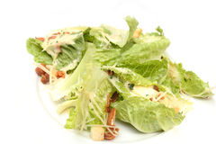 A plated caesar salad. Royalty Free Stock Photography