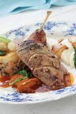 Plated duck main meal Royalty Free Stock Photo