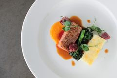 Plated duck main meal Stock Image