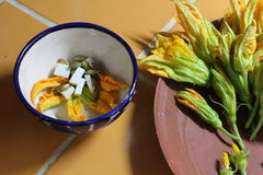 Plated Zucchini Blossoms Royalty Free Stock Photography