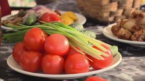 Platee al tonto del tomate, de cucmburs y del foco verde del arco adentro en una tabla metrajes