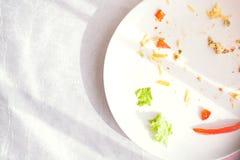 Platee con la comida de las migas y la bifurcación usada Imágenes de archivo libres de regalías