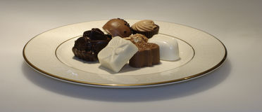 Plateful of chocolate. Belgian chocolates arranged on fine china Royalty Free Stock Image