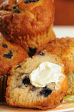 Plateful of muffins Royalty Free Stock Photos