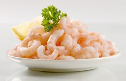 Plateful of shrimps Stock Photos