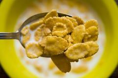 Platen met cornflakes. stock afbeelding