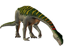 Plateosaurus-3D Dinosaur Stock Photo