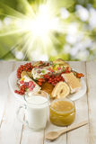 Plates with cookies, cup with milk and honey on the table. Against the sun Stock Images