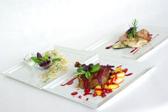 Plates of fine dining meal. Niceley decorated fine dining meals Stock Image