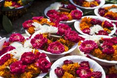 Plates of flowers and candles. Carpet of colorful plates of flowers and candles Stock Photos