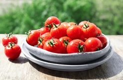 Plates with ripe tomatoes on table outdoors. Plates with fresh ripe tomatoes on table outdoors Royalty Free Stock Image