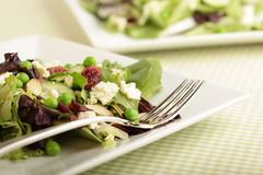 Plates of fresh salad. Fresh, organic salad on a green plaid tablecloth Royalty Free Stock Photo