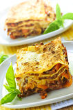 Plates of lasagna Stock Photo