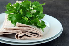 Plates with a linen napkin and a sprig of parsley Royalty Free Stock Photos