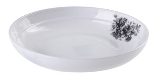 Plates on the white background. royalty free stock image