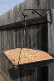 Platform Bird Feeder Stock Images