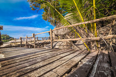 Platform beside sea with coconut tree Stock Image