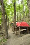 Platform Tents in the Woods Stock Image