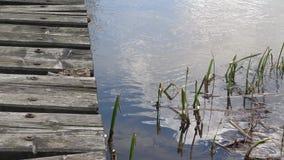 platforma na jeziorze zbiory