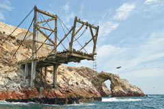 Platforms at Ballestas-island Royalty Free Stock Photos