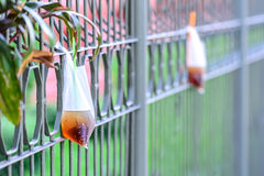 Platic garbage, plastic bag used for sparkling water was left on fence in city Royalty Free Stock Images