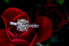 Platina Diamond Ring On Red Rose Hearts & pilar royaltyfri bild