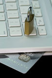 Platinum Credit Card. Safe and secure online transaction, payment via credit card stock photo