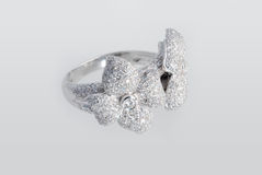 Free Platinum Ring With Diamonds Stock Photography - 12095612
