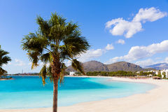 Platja de Alcudia beach in Mallorca Majorca Stock Images