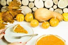 Plato americano tradicional para el día de la acción de gracias en el tiempo del otoño Foto de archivo