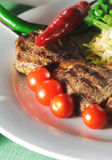 Plato caliente de la carne - Shashlik imagen de archivo libre de regalías