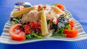 Plato con la ensalada y el pulpo vegetales mezclados con muchos coloridos Fotografía de archivo