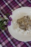 Plato confeccionado - arroz con la carne en salsa de crema agria imagen de archivo