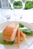 Plato de color salmón fotos de archivo
