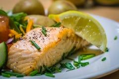 Plato de color salmón de la carne asada segundo Foto de archivo