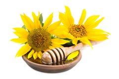 Plato de la arcilla con el drizzler y los girasoles de la miel Foto de archivo libre de regalías